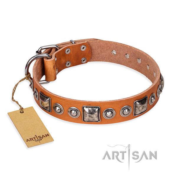 Hardwearing leather dog collar with durable elements