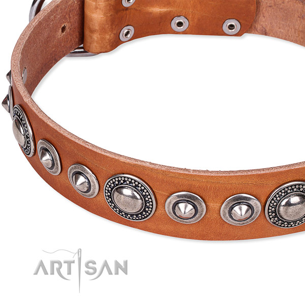 Snugly fitted leather dog collar with extra sturdy non-rusting buckle