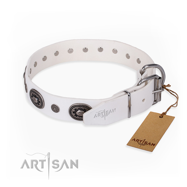 Practical leather collar for your beloved canine