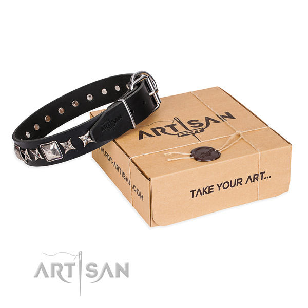 Stylish full grain natural leather dog collar for daily use