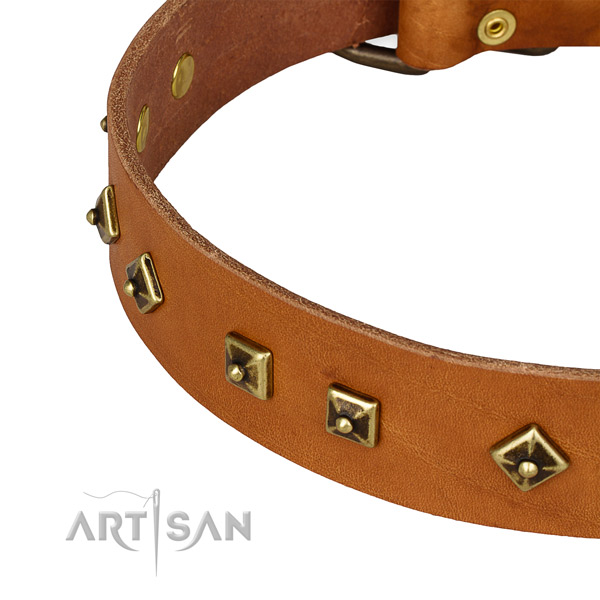 Handy use leather collar with rust-proof buckle and D-ring