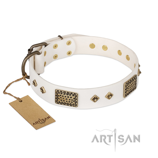 Remarkable design embellishments on leather dog collar