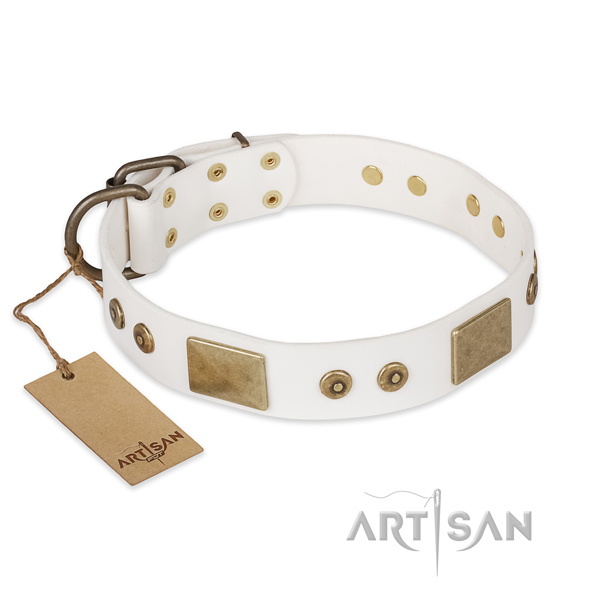 Unique design adornments on full grain leather dog collar