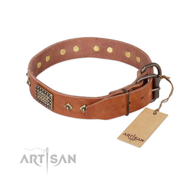 Walking full grain natural leather collar with studs for your canine