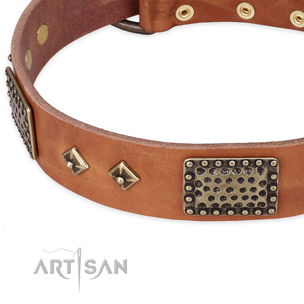 Everyday use full grain natural leather collar with corrosion resistant buckle and D-ring