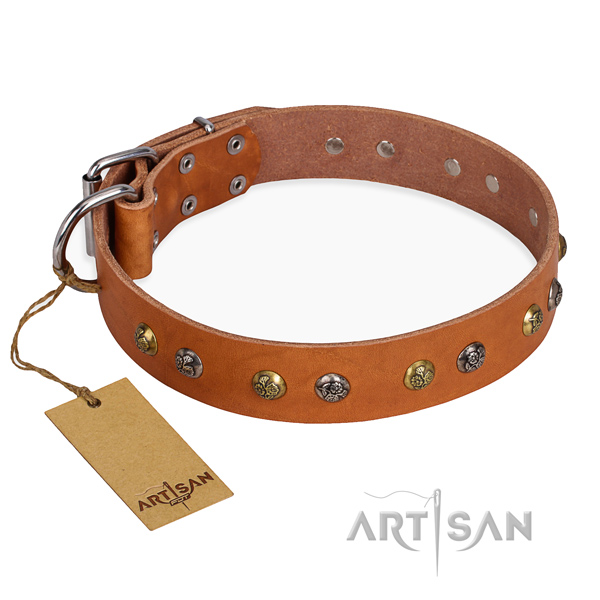 Practical leather collar for your darling pet