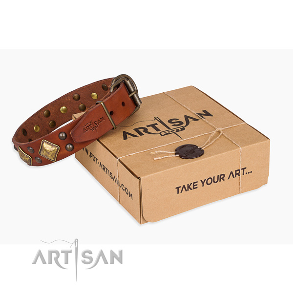 Awesome full grain leather dog collar for everyday use