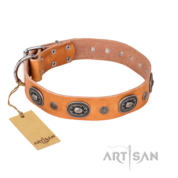 Awesome design embellishments on full grain leather dog collar