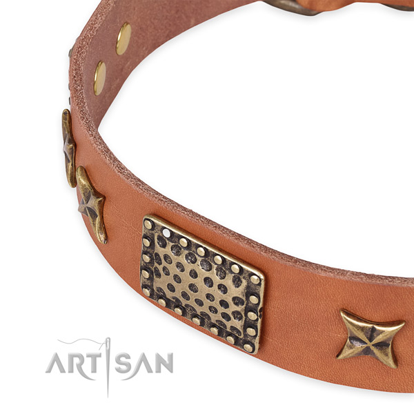 Snugly fitted leather dog collar with resistant buckle