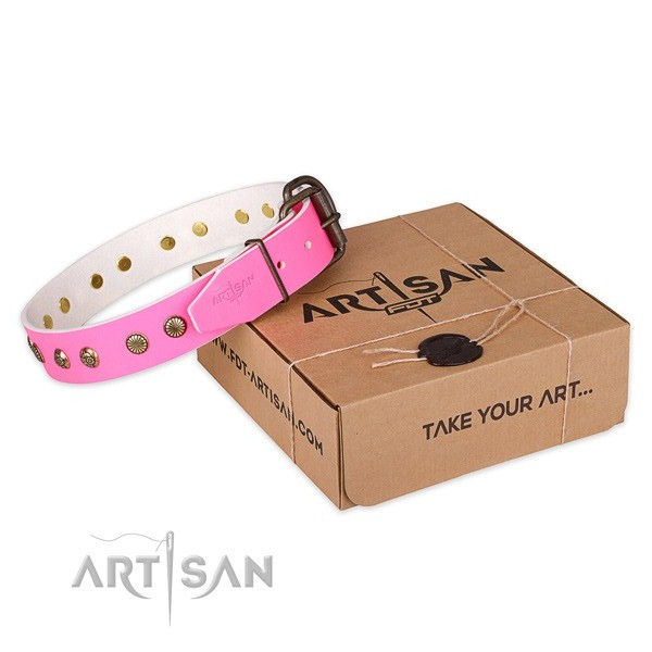 High quality full grain natural leather dog collar for daily use