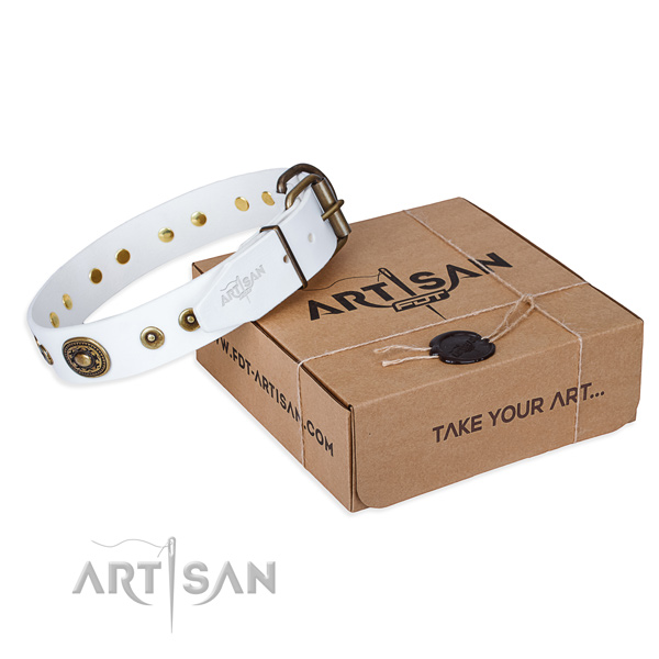 Finest quality natural genuine leather dog collar for daily walking