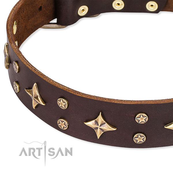 Easy to adjust leather dog collar with resistant non-rusting fittings