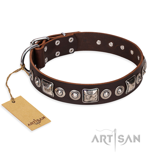 Reliable leather dog collar with rust-resistant fittings
