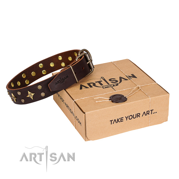 Fine quality leather dog collar for walking