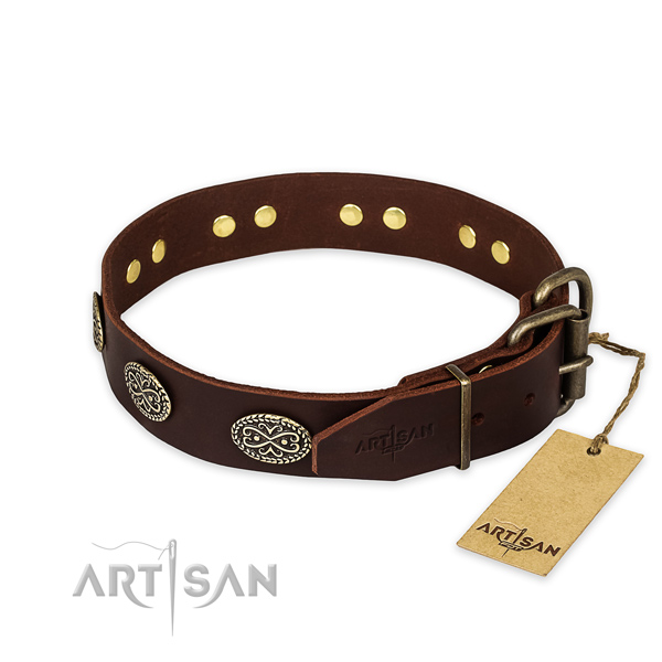 Everyday walking full grain natural leather collar with embellishments for your four-legged friend