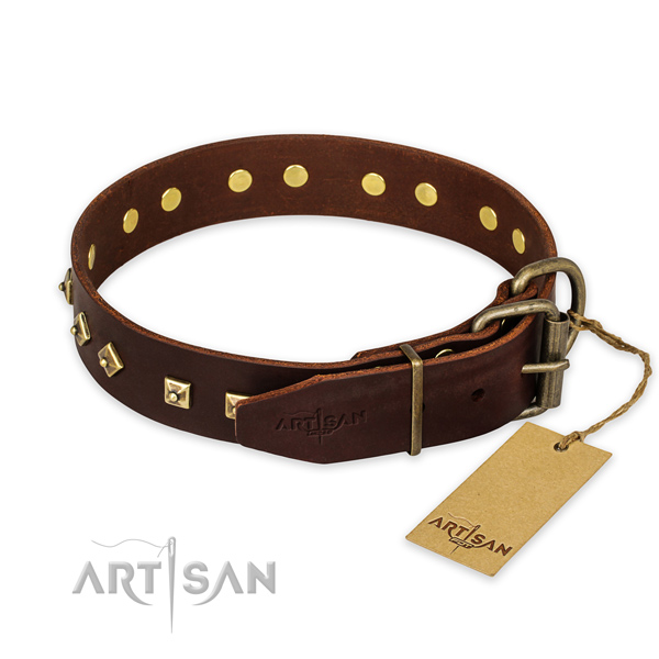Walking full grain leather collar with adornments for your pet