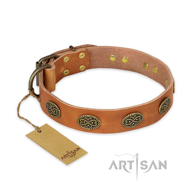 Trendy design adornments on leather dog collar