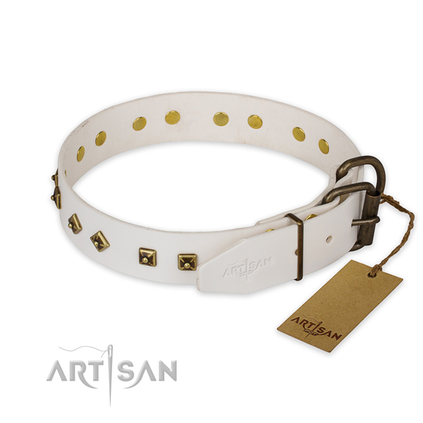 Everyday use full grain leather collar with embellishments for your dog