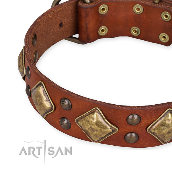 Adjustable leather dog collar with resistant rust-proof buckle