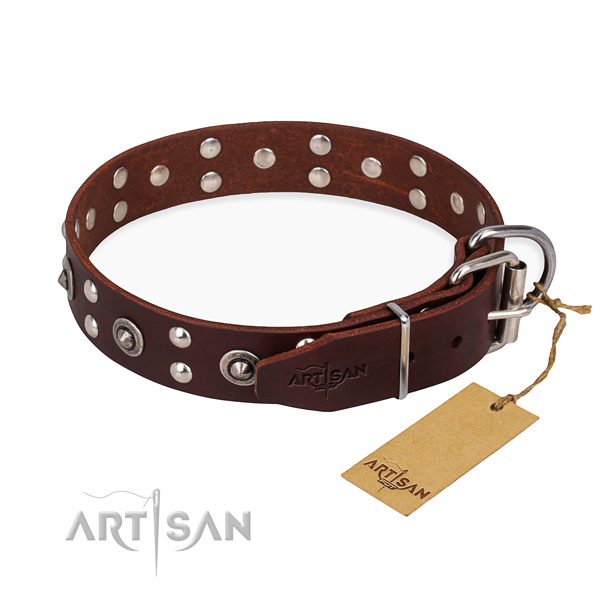 Everyday walking full grain leather collar with adornments for your doggie