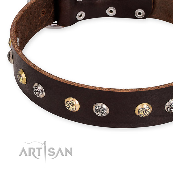 Easy to use leather dog collar with almost unbreakable durable hardware