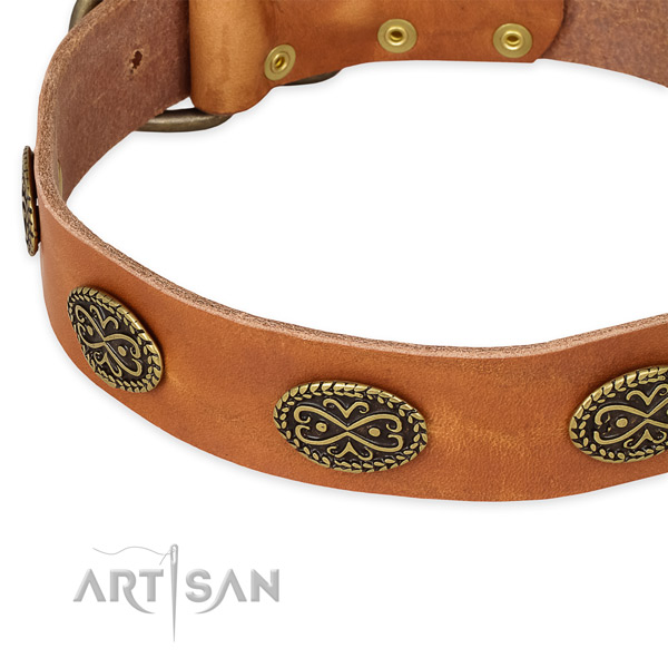 Daily walking genuine leather collar with rust resistant buckle and D-ring