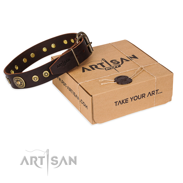 Top quality brown leather dog collar for daily use