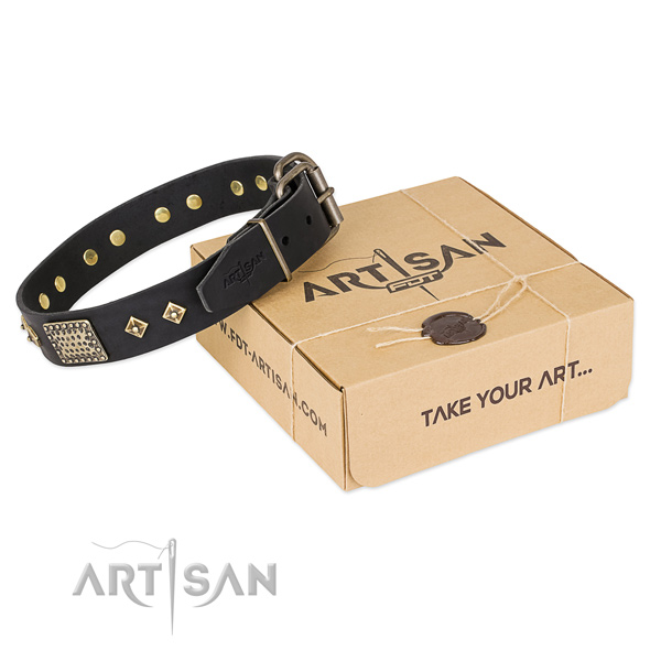 Best quality genuine leather dog collar for walking in style