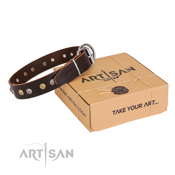 Finest quality full grain genuine leather dog collar for daily walking