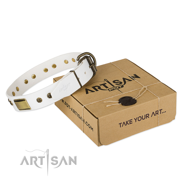 Awesome leather dog collar for walking in style