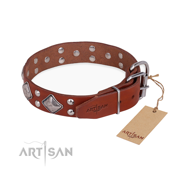 Fashionable leather collar for your noble dog
