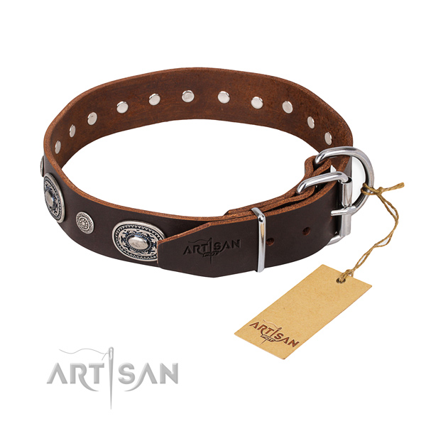 Fashionable leather collar for your handsome dog