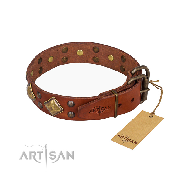 Functional leather collar for your elegant canine
