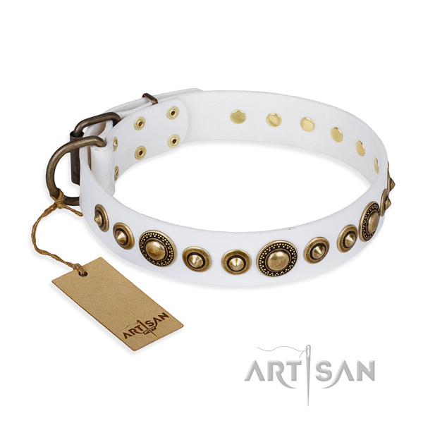 Remarkable design studs on leather dog collar