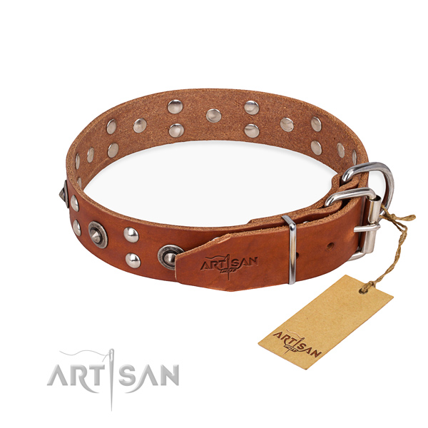 Everyday use leather collar with studs for your canine
