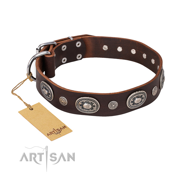 Unusual design decorations on leather dog collar