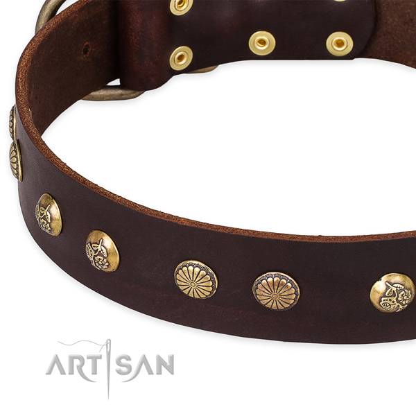 Snugly fitted leather dog collar with almost unbreakable durable buckle and D-ring