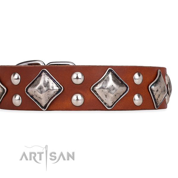 Adjustable leather dog collar with extra sturdy non-rusting fittings