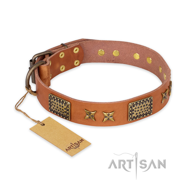 Awesome design decorations on full grain natural leather dog collar