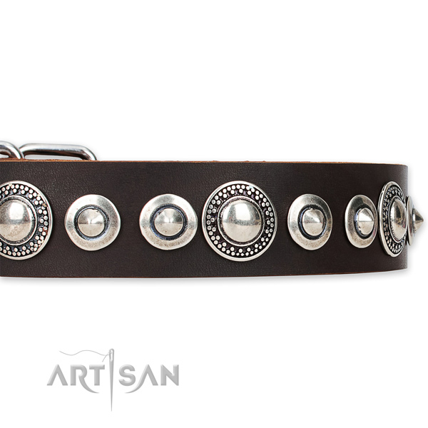 Quick to fasten leather dog collar with extra strong chrome plated fittings