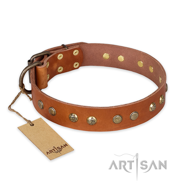 Extraordinary design studs on full grain genuine leather dog collar