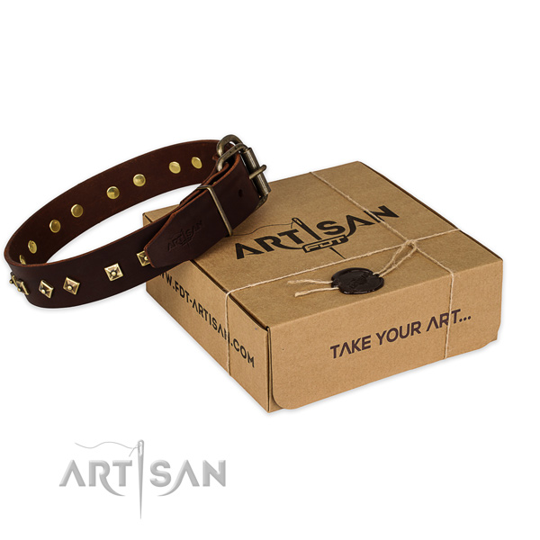 Stylish design full grain natural leather dog collar for daily use