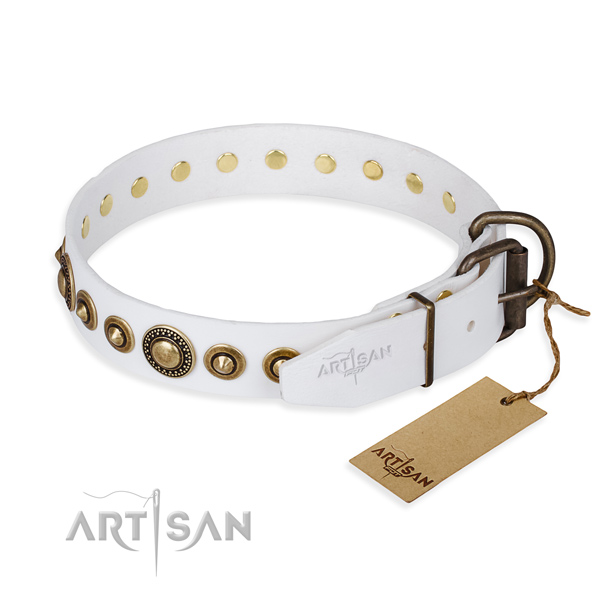 Versatile leather collar for your gorgeous four-legged friend