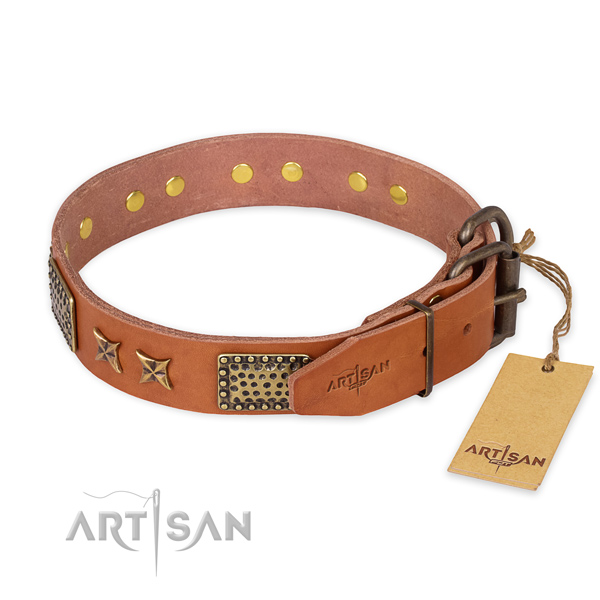 Walking natural genuine leather collar with decorations for your pet