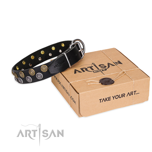 Everyday leather dog collar with refined decorations