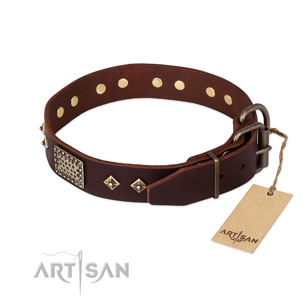 Stylish walking leather collar with studs for your doggie