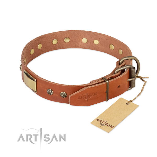 Stylish walking full grain natural leather collar with adornments for your canine