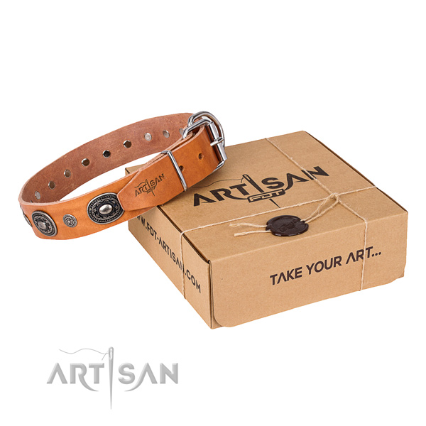 Incredible full grain leather dog collar for stylish walks