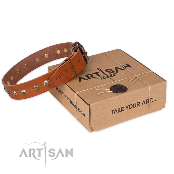 Stylish natural genuine leather dog collar for daily walking