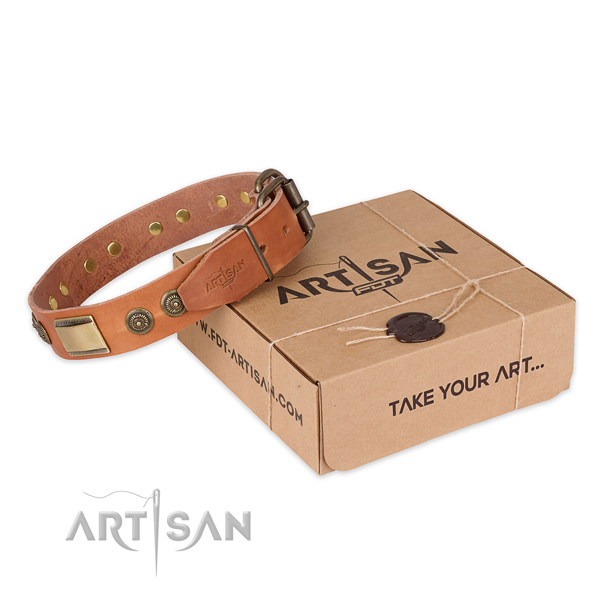 Fashionable full grain natural leather dog collar for daily use